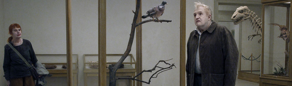 A Pigeon Sat on a Branch Reflecting on Existence (2014)